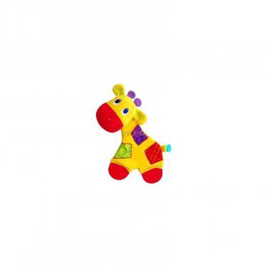Прорезыватель Kids II Жираф Фото