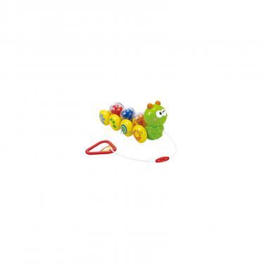 Развивающая игрушка PlayGo Веселая гусеница Фото