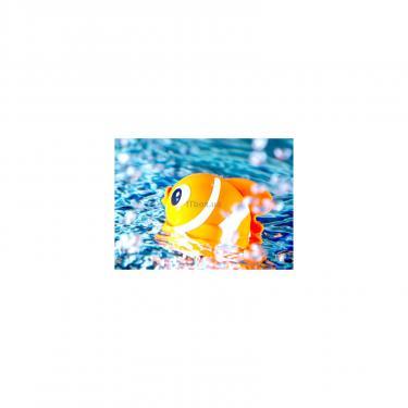 Игрушка для ванной Tolo Toys Рыбки на магнитах Фото 1