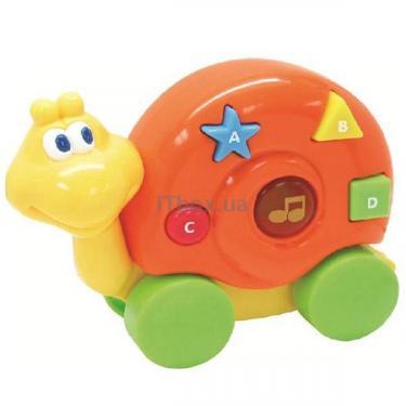 Развивающая игрушка Navystar Улитка Фото