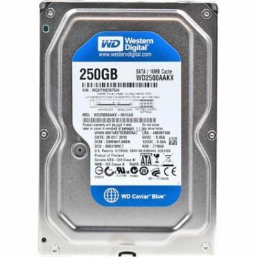 """Жесткий диск Western Digital 3.5"""" 250Gb Фото"""
