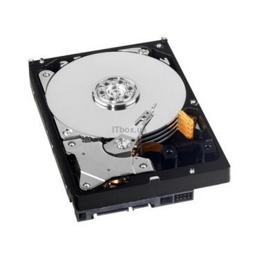 "Жесткий диск Western Digital 3.5"" 1TB Фото"