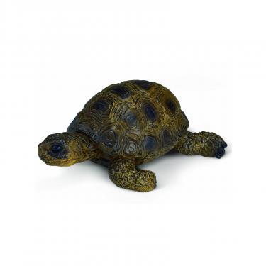 Фигурка Schleich Черепаха Фото