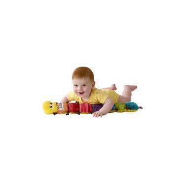 Развивающая игрушка Tomy Гусеничка Фото 3