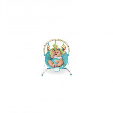Кресло-качалка Kids II Маленькая черепаха Фото
